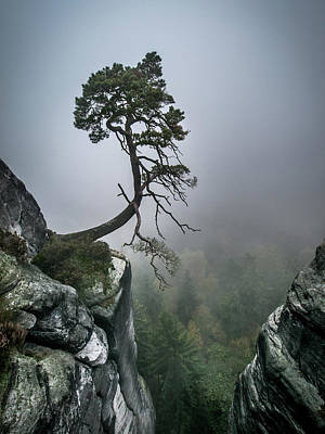Fog Photograph - Against The Odds by Andreas Wonisch