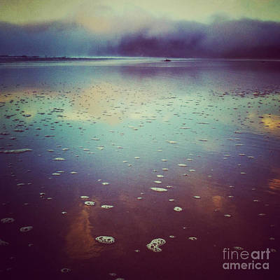 Agate Beach Oregon Photograph - Agate Beach Reflections by Andrea Gingerich