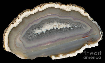 Photograph - agate stone from Brazil by Rudi Prott