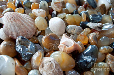 Photograph - Agates by Gwyn Newcombe
