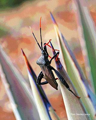 Art Print featuring the photograph Agave Bug  by Tom Janca
