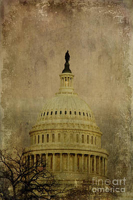 Aged Capitol Dome Art Print by Terry Rowe