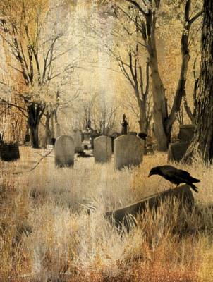 Birds In Graveyard Photograph - Aged Infrared by Gothicrow Images