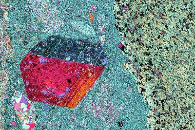Thin Section Photograph - Agglomerate Rock by Alfred Pasieka/science Photo Library