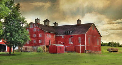 Rural Scenes Digital Art - Aging Gracefully by Lori Deiter