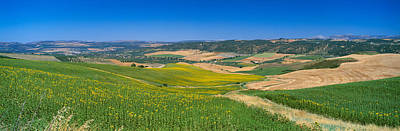 Ronda Photograph - Agricultural Fields, Ronda, Malaga by Panoramic Images