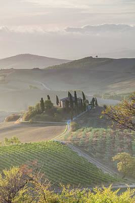 Adam Photograph - Agricultural Landscape, Val D'orcia by Peter Adams