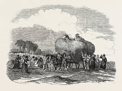 Agricultural Pictures Hay Harvest Art Print