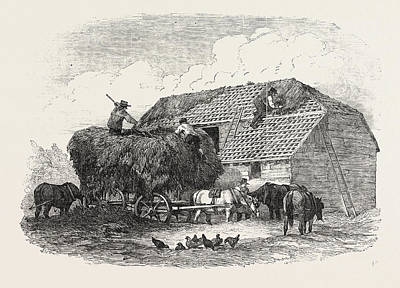 Shed Drawing - Agricultural Pictures  Thatching by English School