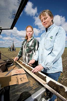 Agricultural Soil Sampling Print by Stephen Ausmus/us Department Of Agriculture