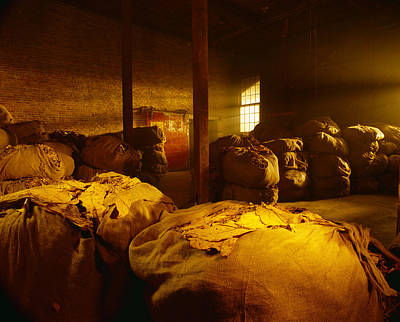 Photograph - Agriculture - Bales Of Dried Tobacco by R. Hamilton Smith