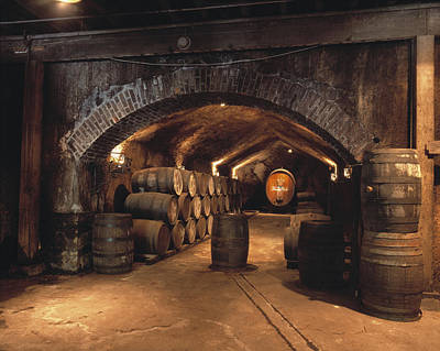 Gerald Photograph - Agriculture - Buena Vista Wine Caves by Gerald French