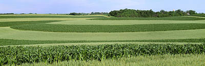 Contour Farming Photograph - Agriculture - Contour Strips Of Mid by Timothy Hearsum