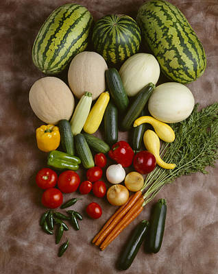 Agriculture - Mixed Vegetables Art Print by Ed Young