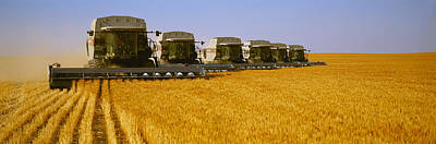 Gleaners Photograph - Agriculture - Six Gleaner Combines by Timothy Hearsum