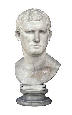 Statue Portrait Photograph - Agrippa. 63 Bc - 12 Bc. Bust. Roman by Everett