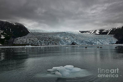 Photograph - Aialik Glacier by David Arment