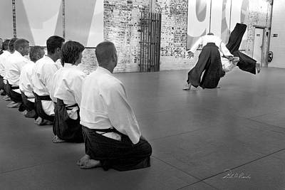 Aikido Demonstration Art Print by Frederic A Reinecke