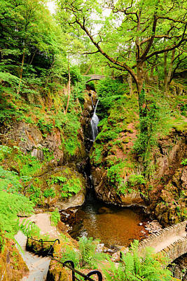 Aira Force Wall Art - Photograph - Aira Force Waterfall Ullswater Valley Lake District Cumbria England Uk In Beautiful Woodland by Michael Charles