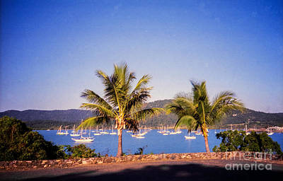 Photograph - Airlie Beach by Suzanne Luft