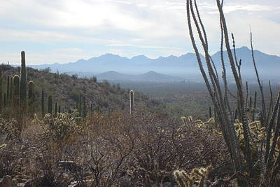 Photograph - Ajo Mountain Range by Susan Woodward