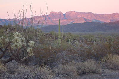 Photograph - Ajo Mountains At Sunset by Susan Woodward
