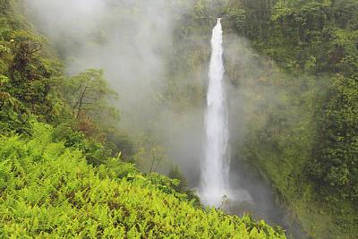 Akaka Falls Akaka Falls State Park Print by Stuart Westmorland