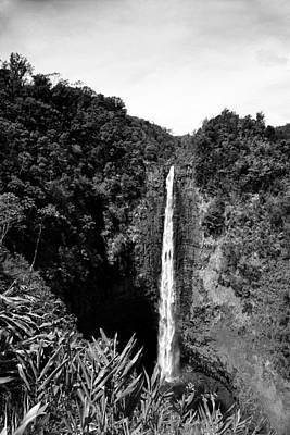 Photograph - Akaka Falls - Bw by Greg Vaughn - Printscapes