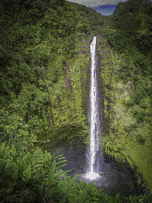 Photograph - Akaka Falls by Dave Hall