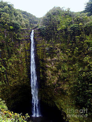 Photograph - Akaka Falls by Patricia Griffin Brett