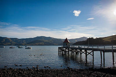 Photograph - Akaroa Harbour  by Jenny Setchell