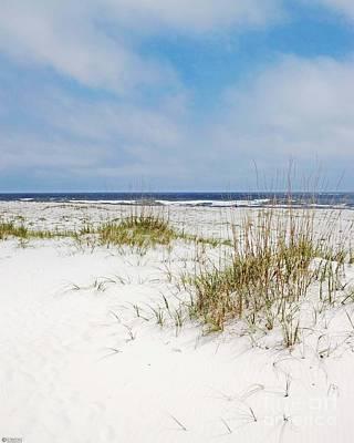 Photograph - Alabama Point 2 by Lizi Beard-Ward