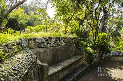 Photograph - Alameda Gardens Stone Bench by Deborah Smolinske