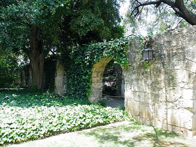Photograph - Alamo Defenders Wall by The GYPSY