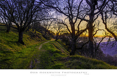 Antlers - Alamo Hills by Don Hoekwater Photography