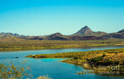 Williams Dam Photograph - Alamo Lake by Robert Bales