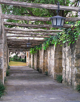 Photograph - Alamo Pathway  by David and Carol Kelly