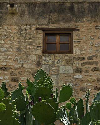 Alamo Window Art Print by Jemmy Archer