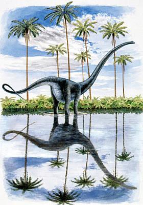 Paleozoology Photograph - Alamosaurus Dinosaur by Deagostini/uig