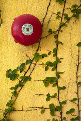 Photograph - Alarm Bell And Vines Yellow Wall by David Smith