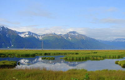 Photograph - Alaska 15 by Lew Davis
