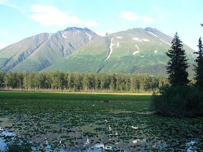 Photograph - Alaska Lake 2 by Lew Davis