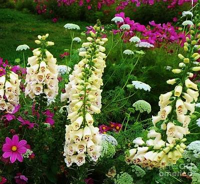 Photograph - Alaska Wild Flowers by Brigitte Emme