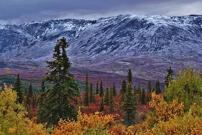 Basketball Patents - Alaskan Autumn Landscape by David Broome