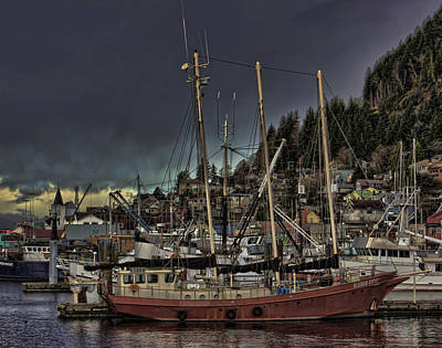 Photograph - Alaskan Gypsy V01 by Timothy Latta