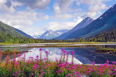 Animals Royalty-Free and Rights-Managed Images - Alaskan Horizons by Patrick Wolf