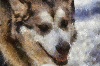 Dogs In Snow Digital Art - Alaskan Malamute Photo Art 06 by Thomas Woolworth