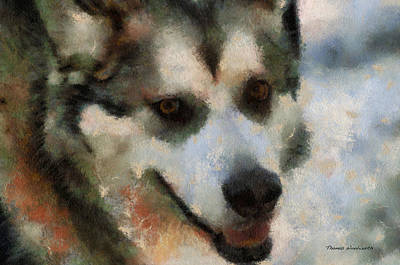 Dogs In Snow Digital Art - Alaskan Malamute Photo Art 07 by Thomas Woolworth