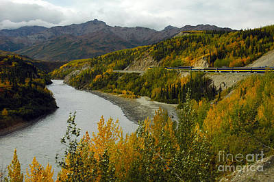 Photograph - Alaskan Train Ride by Cindy Murphy - NightVisions
