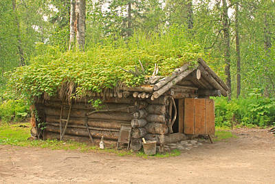 Photograph - Alaskan Trappers Hut by Ronald Olivier